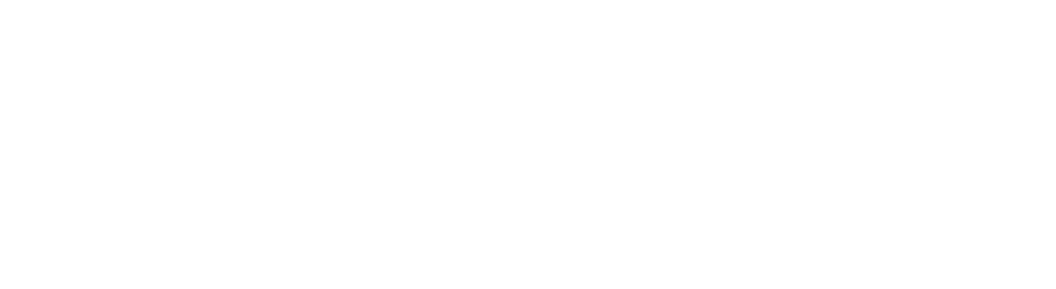 Acorn Advisors LLC – Consulting Firm